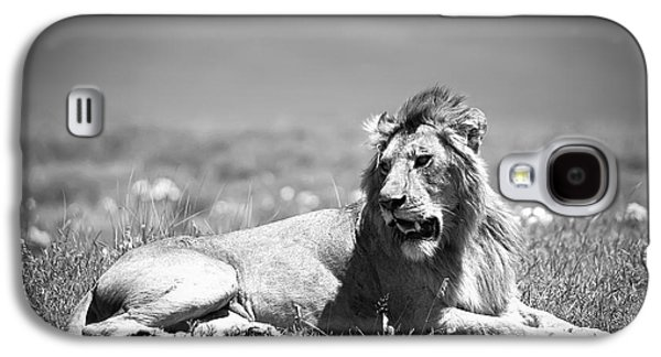 King Galaxy S4 Cases - Lion King in Black and White Galaxy S4 Case by Sebastian Musial
