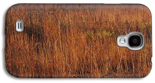 Prairie Galaxy S4 Cases - Little Bluestem Grasses On The Prairie Galaxy S4 Case by Steve Gadomski