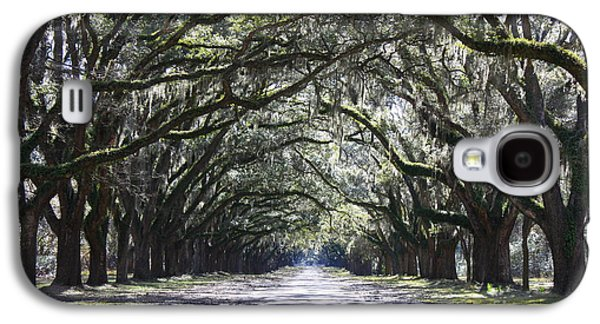 Old Country Roads Photographs Galaxy S4 Cases - Live Oak Lane in Savannah Galaxy S4 Case by Carol Groenen