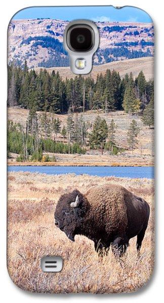 Yellowstone Digital Galaxy S4 Cases - Lone Buffalo Galaxy S4 Case by Cindy Singleton