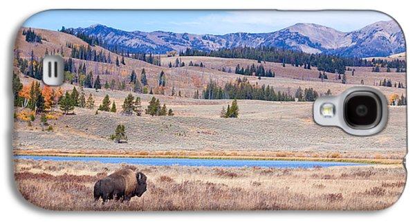 Recently Sold -  - Bison Digital Art Galaxy S4 Cases - Lone Bull Buffalo Galaxy S4 Case by Cindy Singleton