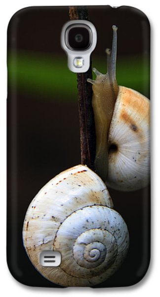 Helix Galaxy S4 Cases - Love Affair Galaxy S4 Case by Stylianos Kleanthous