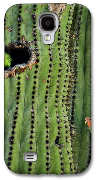 Lovebirds And The Saguaro  Galaxy S4 Case by Saija  Lehtonen