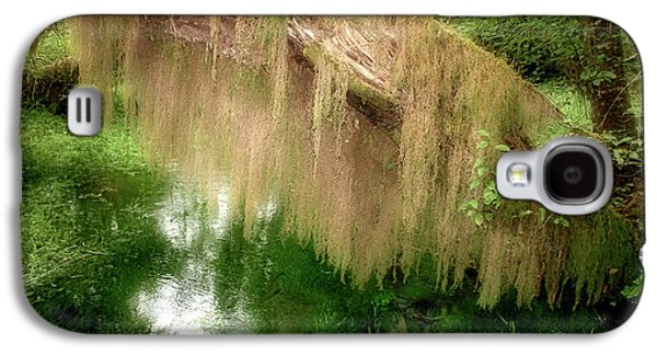 Tendrils Galaxy S4 Cases - Magical Hall of Mosses - Hoh Rain Forest Olympic National Park WA USA Galaxy S4 Case by Christine Till