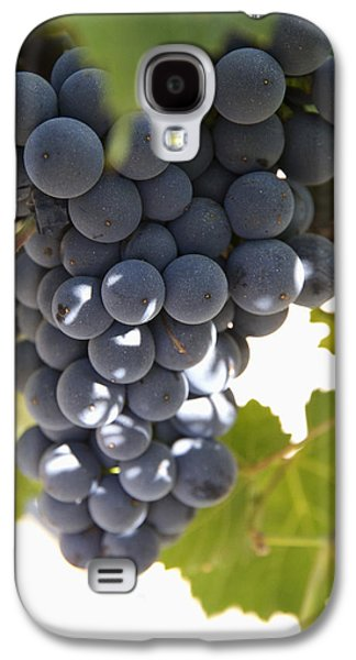 Malbec Galaxy S4 Cases - Malbec Grapes On The Vine Galaxy S4 Case by Peter Langer