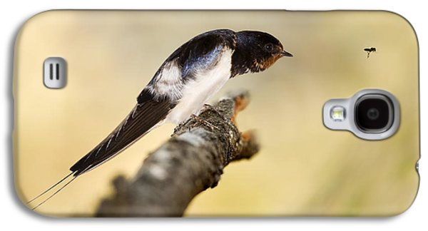 Hirundo Galaxy S4 Cases - Male Swallow Galaxy S4 Case by Power And Syred