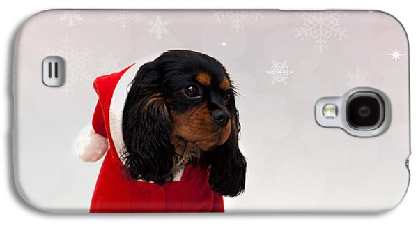 Studio Photographs Galaxy S4 Cases - Marmaduke on snow background Galaxy S4 Case by Jane Rix