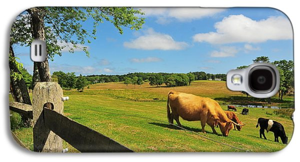 Catherine Reusch Daley Galaxy S4 Cases - Massachusetts Farm Galaxy S4 Case by Catherine Reusch  Daley