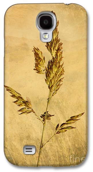 Nature Scene Digital Art Galaxy S4 Cases - Meadow Grass Galaxy S4 Case by John Edwards