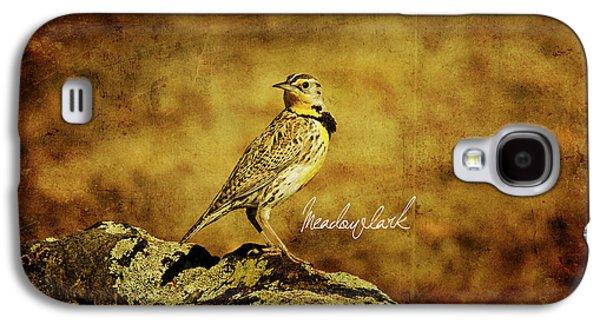 Meadowlark Galaxy S4 Case by Lana Trussell