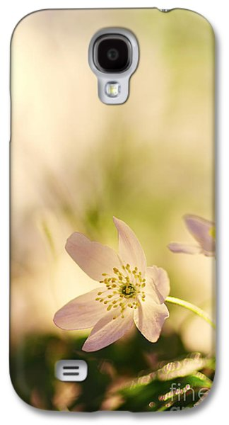 Bloosom Galaxy S4 Cases - Melody of Spring Galaxy S4 Case by Tanja Riedel
