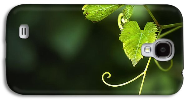 Vine Leaves Galaxy S4 Cases - Memories Of Green Galaxy S4 Case by Evelina Kremsdorf