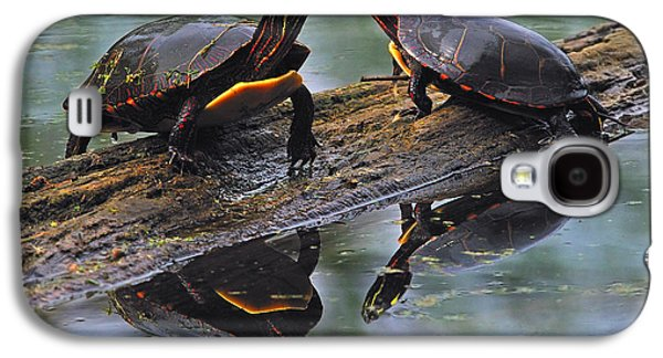 Fens Galaxy S4 Cases - Midland Painted Turtles Galaxy S4 Case by Tony Beck