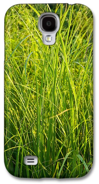 Prairie Galaxy S4 Cases - Midwest Prairie Grasses Galaxy S4 Case by Steve Gadomski