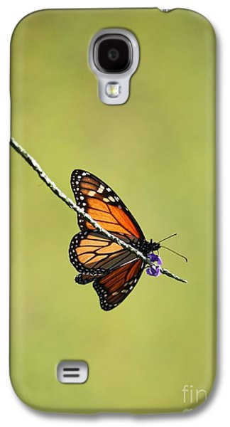 Sunlight On Flowers Galaxy S4 Cases - Monarch and Natural Green Canvas Galaxy S4 Case by Carol Groenen