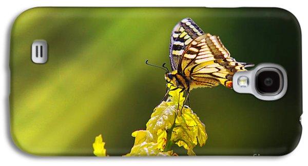 Feeding Photographs Galaxy S4 Cases - Monarch Butterfly Galaxy S4 Case by Carlos Caetano