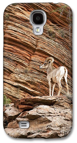Ledge Galaxy S4 Cases - Mountain goat Galaxy S4 Case by Jane Rix