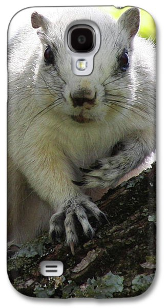 Fox Squirrel Galaxy S4 Cases - Mr. Inquisitive I  Galaxy S4 Case by Betsy A  Cutler