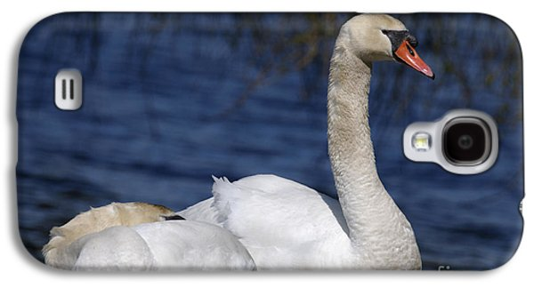Swan Pair Galaxy S4 Cases - Mute Swans by Lagoon Galaxy S4 Case by Sharon  Talson