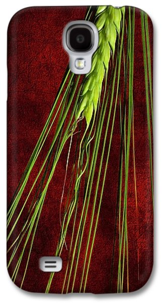 Abstract Nature Galaxy S4 Cases - Nature Patterns Galaxy S4 Case by Svetlana Sewell