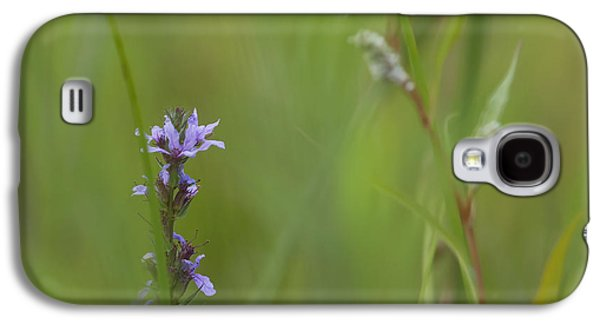 Wildlife Celebration Galaxy S4 Cases - Natures Poetry... Galaxy S4 Case by Nina Stavlund
