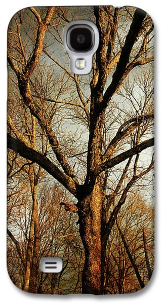Winter Prints Photographs Galaxy S4 Cases - Old Faithful Galaxy S4 Case by Amy Tyler