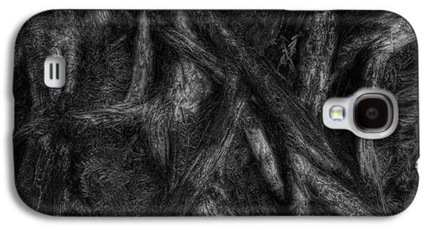 Tree Roots Galaxy S4 Cases - Old Silvery Roots Galaxy S4 Case by David Gordon
