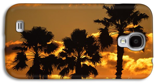 Reflection Of Sun In Clouds Galaxy S4 Cases - Palm Trees in Sunrise Galaxy S4 Case by Susanne Van Hulst