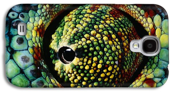 Chameleon Galaxy S4 Cases - Panther Chameleon Eye Galaxy S4 Case by Daniel Heuclin and Photo Researchers