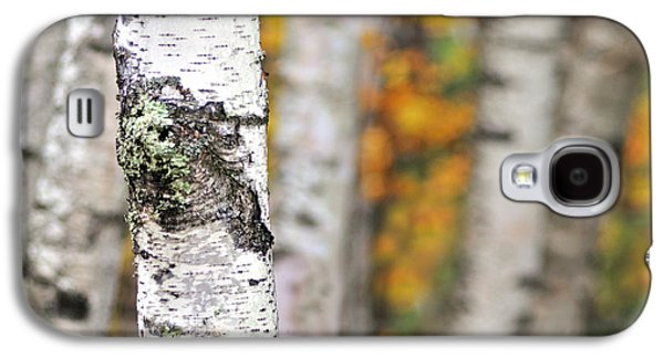 Abstract Nature Galaxy S4 Cases - Paper Birch - An autumnal abstract Galaxy S4 Case by Thomas Schoeller