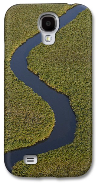 Papyrus Galaxy S4 Cases - Papyrus Cuperus Papyrus Swamps Galaxy S4 Case by Pete Oxford