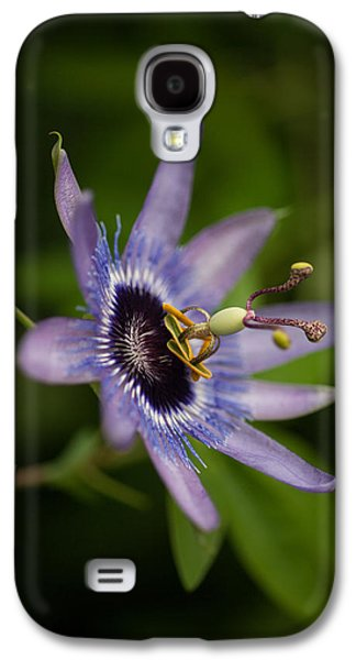 Passion Galaxy S4 Cases - Passiflora Galaxy S4 Case by Mike Reid