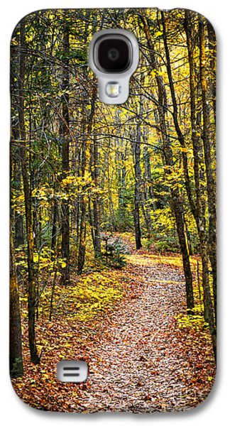 Path Galaxy S4 Cases - Path in fall forest Galaxy S4 Case by Elena Elisseeva