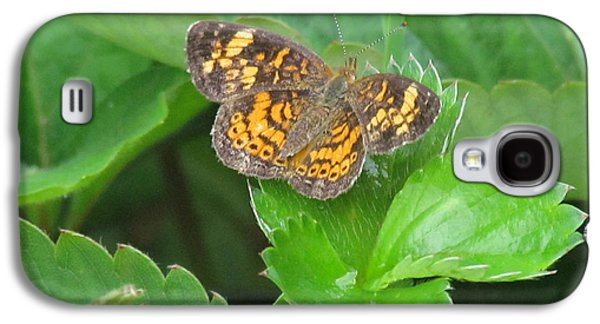 Randi Shenkman Galaxy S4 Cases - Pearl Crescent Butterfly Galaxy S4 Case by Randi Shenkman