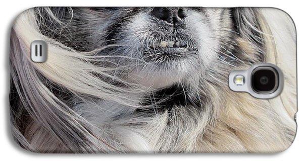 Dogs Pyrography Galaxy S4 Cases - Pekingese Portrait  Galaxy S4 Case by Valia Bradshaw