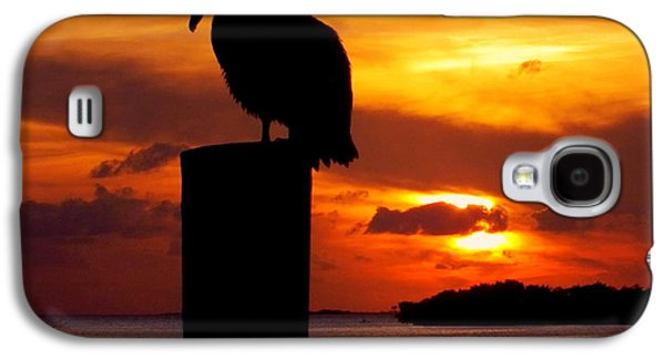 Reflections Of Sun In Water Galaxy S4 Cases - Pelican Sundown Galaxy S4 Case by Karen Wiles