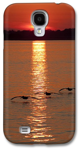 Bouys Galaxy S4 Cases - Pelican Sunset Galaxy S4 Case by Dustin K Ryan