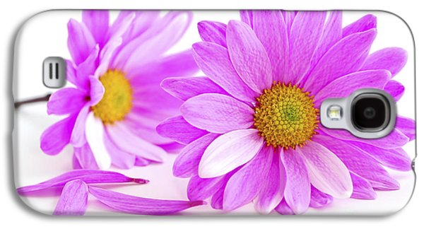 Flower Design Photographs Galaxy S4 Cases - Pink flowers Galaxy S4 Case by Elena Elisseeva