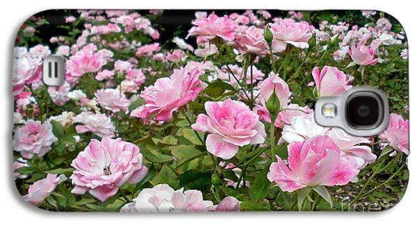 Floribunda Galaxy S4 Cases - Pink Iceberg Roses Galaxy S4 Case by Kaye Menner
