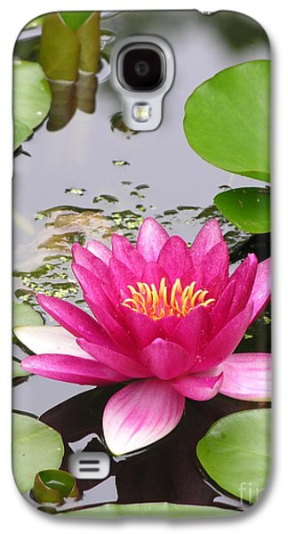 Pink Lily Flower  Galaxy S4 Case by Diane Greco-Lesser