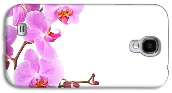 Studio Photographs Galaxy S4 Cases - Pink orchids Galaxy S4 Case by Jane Rix