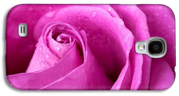 Studio Photographs Galaxy S4 Cases - Pink rose Galaxy S4 Case by Jane Rix