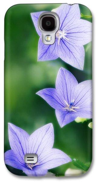 Balloon Flower Galaxy S4 Cases - Platycodon Grandiflorus Galaxy S4 Case by Maria Mosolova