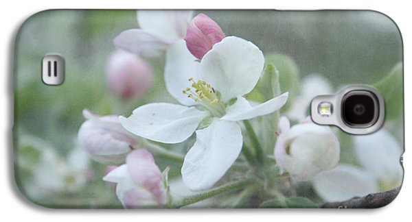Apple Trees Galaxy S4 Cases - Pomme d Api 01 - s01bt01b Galaxy S4 Case by Variance Collections