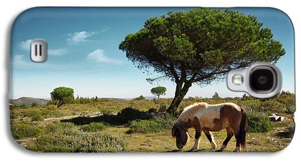 Pasture Scenes Photographs Galaxy S4 Cases - Pony Pasturing Galaxy S4 Case by Carlos Caetano