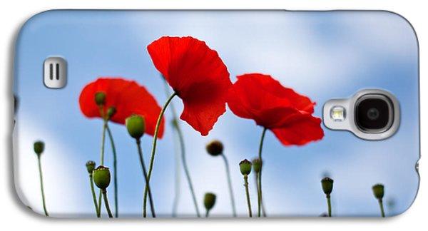 Botanical Galaxy S4 Cases - Poppy Flowers 08 Galaxy S4 Case by Nailia Schwarz