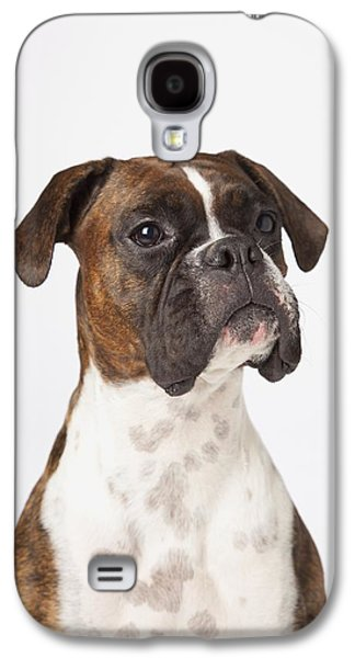 Boxer Galaxy S4 Cases - Portrait Of Boxer Dog On White Galaxy S4 Case by LJM Photo