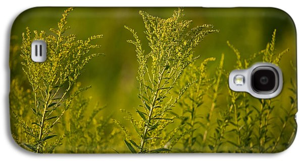 Prairie Galaxy S4 Cases - Prairie Goldenrod Galaxy S4 Case by Steve Gadomski