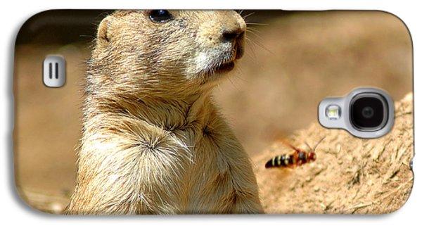 Prarie Dog Bee Alert Galaxy S4 Case by LeeAnn McLaneGoetz McLaneGoetzStudioLLCcom