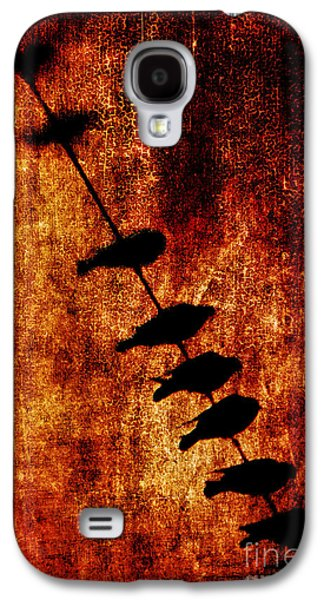 Future Photographs Galaxy S4 Cases - Prophets Galaxy S4 Case by Andrew Paranavitana